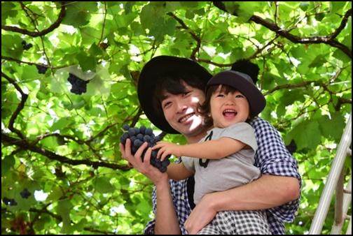 父親と子供のブドウ狩りの画像