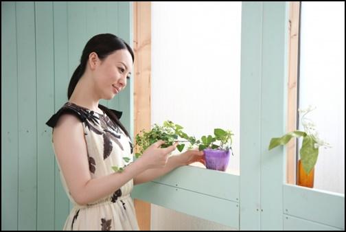 キャリアウーマンが観葉植物を見ている画像