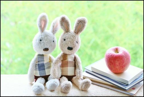 ペアルックの兔の画像