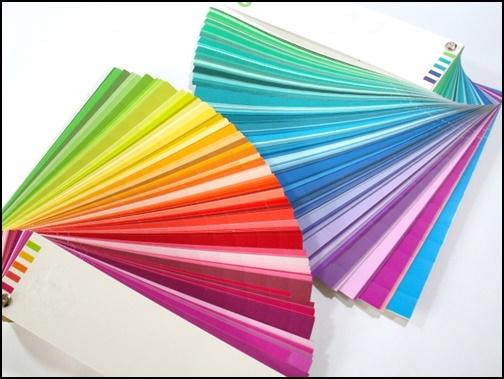 カラーの画像