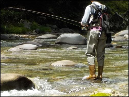 釣りをしている画像