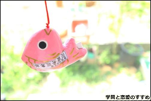 氷川神社のあい鯛みくじの画像