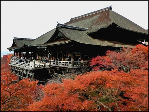 紅葉した清水寺の画像