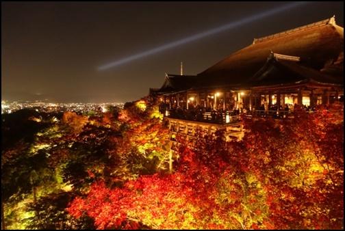 ライトアップされた清水寺の紅葉画像