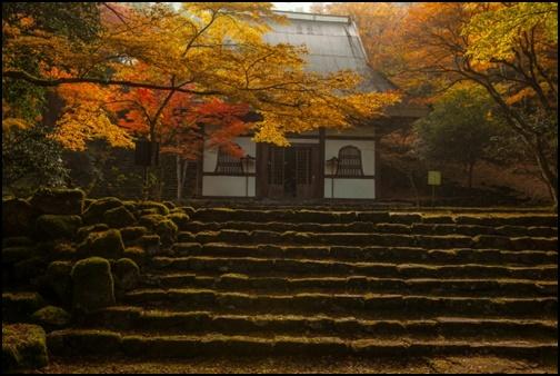 常寂光寺の入り口前の階段と紅葉の画像