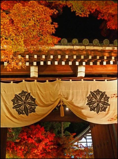 永観堂のライトアップされた紅葉画像