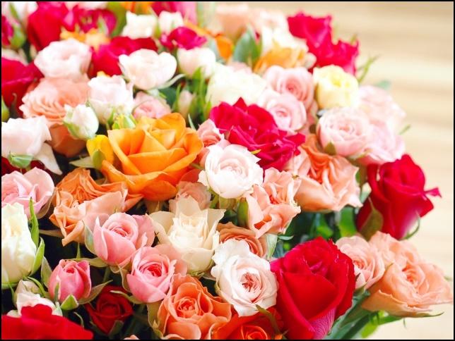 ピンクや赤いバラの花束の画像