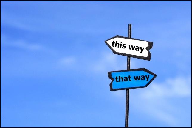 こっちの道かあっちの道かの画像